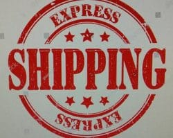 Confetti Express shipping | Confetti Cannons Express Shipping | Gender reveal Confetti